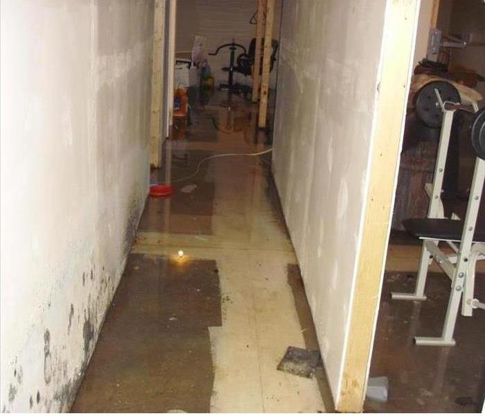 Storm Damage Can Cause Mold to Form Quickly