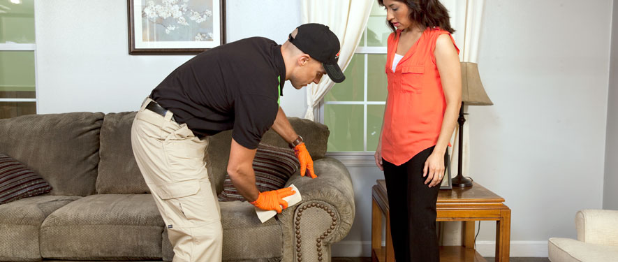 Kalamazoo, MI carpet upholstery cleaning